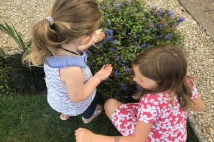 The girls looking for butterflies and bees.