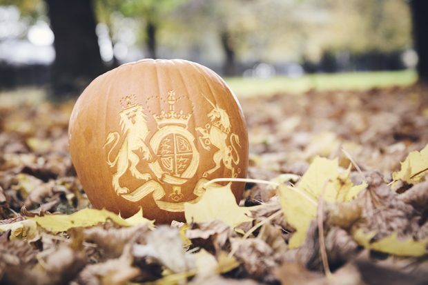Pumpkin carved with the Companies House crest, on a leaf floor.