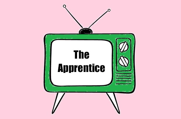 Image of TV with The Apprentice written on it.