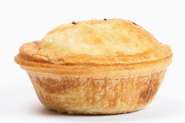 A meat pie against a plain background.