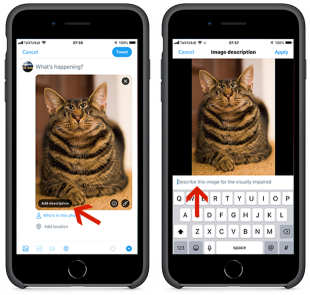 Screens showing how to set up add descriptions to images in Twitter.